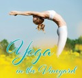 Yoga in the Vineyard - June July August